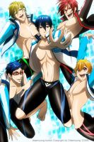 Free! Iwatobi Swimming Club by Breetroad