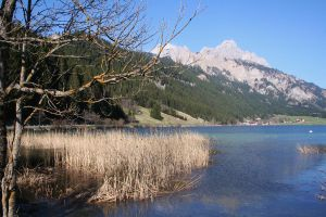 still life lake and mountains by ingeline-art