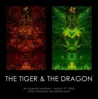 The Tiger and The Dragon by bolshaw