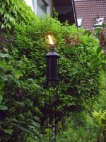 The torch by Sabbelbina