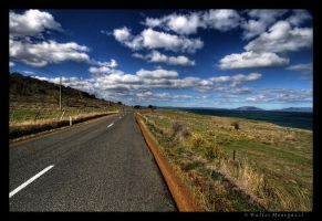 Tasmanian Road by colpewole