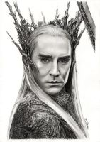 Lee Pace - Thranduil by MeikeZane