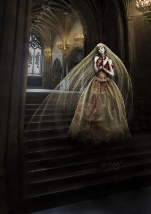 My bleeding heart by Notvitruvian