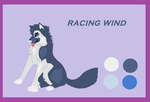 my old wind character by XshewolfsamX