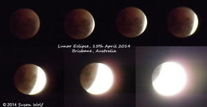 Blood Moon from Brisbane by Draconaa