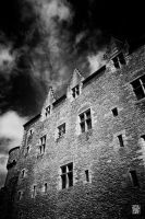 Castle of Suscinio (Britain, France) by sylvaincollet