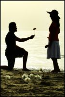 Propose by OdayObaid