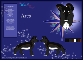 Ares Model-sheet by Aquene-lupetta