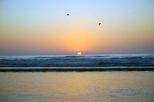La Jolla Sunset by ShannonCPhotography