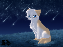 Tsc- Softpaw's Warrior Vigil by DevilsRealm