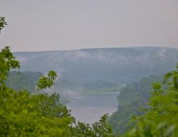Cherry Island through the Trees and Haze 2 by rchsushi