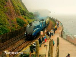 LNER 4464 'Bittern' at Teignmouth by The-Transport-Guild