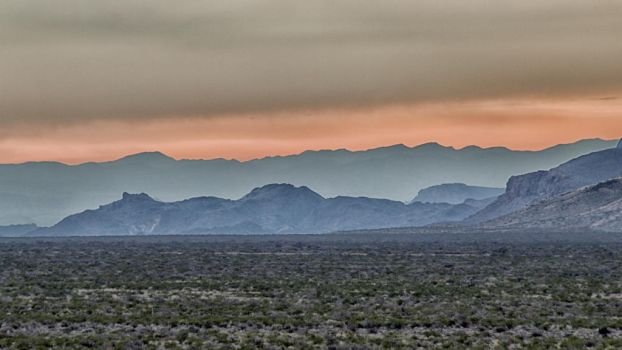 Good Morning from the Chisos by donnasueb