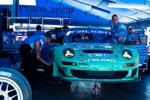 Falken Motorsports by SharkHarrington