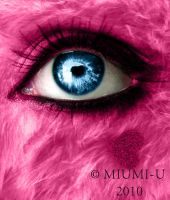 Pink fluffy by Miumi-U
