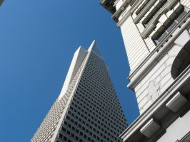 Forced Transamerica Perspectiv by Eris-stock