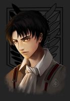 Rivaille by Sihx