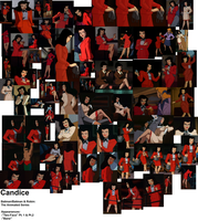 Candice Collage by DukeyDukeyDoo