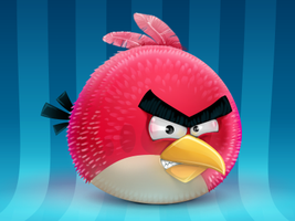 Angry bird! by Ampeross