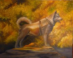 Balto by Fruba