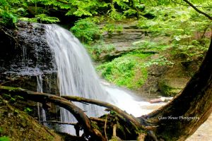 Hell's Hollow Falls in Summer 2 by GlassHouse-1