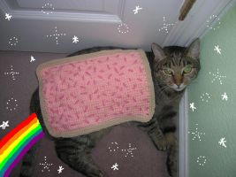Nyan Nyan cat 2 by Zikaeqs