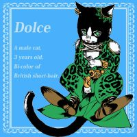 Dolce cat by Peter-Godson