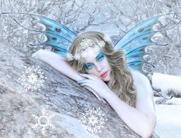 Winter fairy by ditney