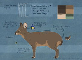Kye Reference by earthytones