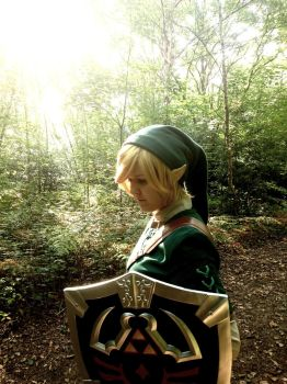 Link cosplay #3 by RealTRgamer