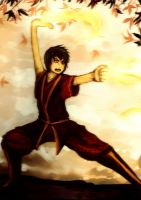 The Banished Prince Zuko by Cool-Kimmy