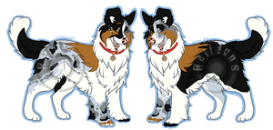 Mix Breed Collie/Shep Design for Sale -- SOLD by Railguns