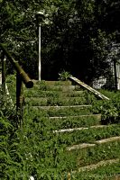 Overgrown Stairs by spcbrass