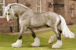 Cm Dapple gray breyer shire by tolthorse