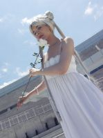 Cosplay - Princess Serenity by naima
