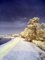 The River Exe in infrared: View 11 by yaschaeffer