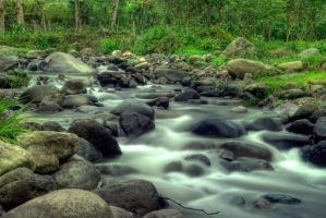 Brook in the Orosi Valley HDR by otas32