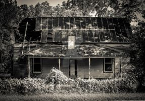 Walking Dead House IV by mikeheer