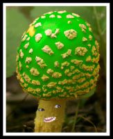 The Real 1up Shroom by jesse-botanical