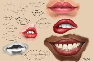 Lips/Mouth study by FelFortune