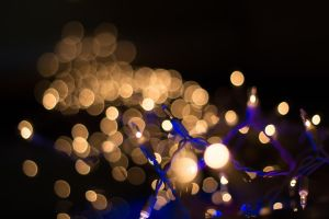 Christmas Lights-2 by FavsCo