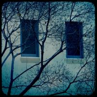 Blue Windows by whazzupman
