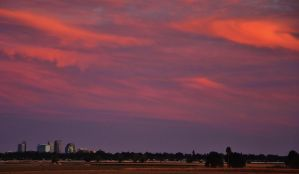 Pink Sky Cityscape by Marilyn958