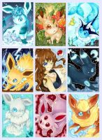 Evee-Evolutions+Touko+Cyndaquill by weishi95