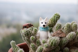 white wolf by freedragonfly