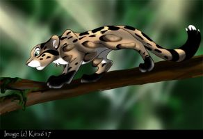 Clouded Leopard in the Forest by kira617
