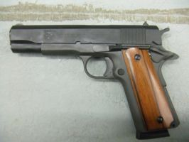 Rock Island 1911A1 by Angrybox