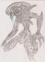 Xenomorphs by gear25