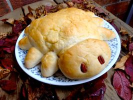 Spider Bread, Spider Bread by Cassandrina