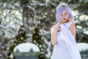 Graveyard in the winter by Force4Photos